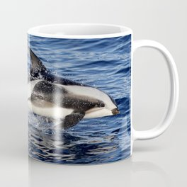 Hourglass Dolphin 2 Coffee Mug
