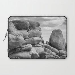 Big Rock 7411 Joshua Tree Laptop Sleeve