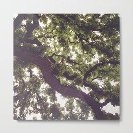 Branch Out Metal Print