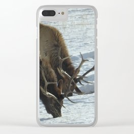 Elk grazing Clear iPhone Case