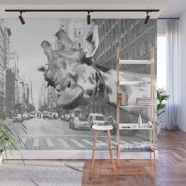 Black and White Selfie Giraffe in NYC Wall Mural