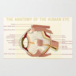 Anatomic poster human Eye Rug