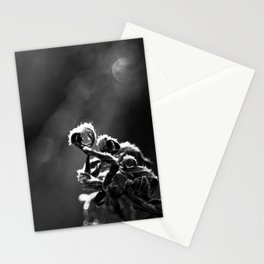 Dead Frost Stationery Cards