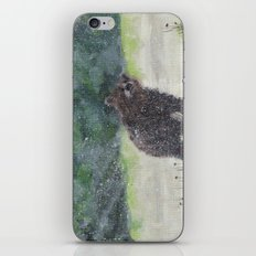 Looking for a cave iPhone & iPod Skin