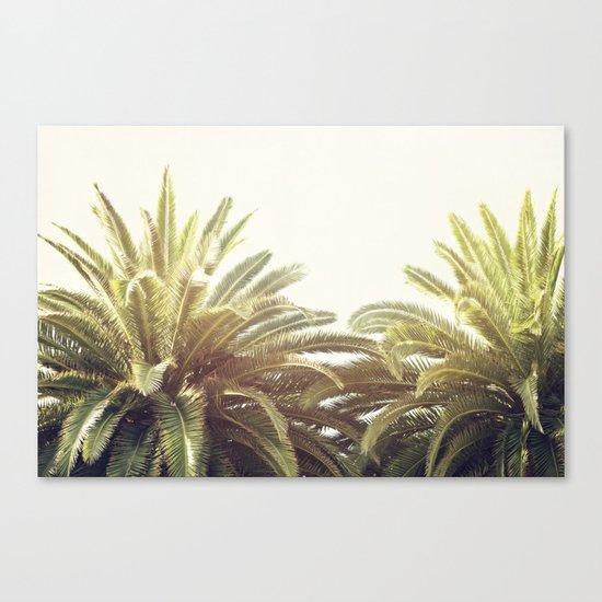 Sunlit Palms Canvas Print
