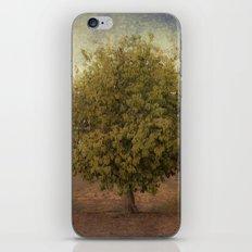 Whimsical Tree iPhone & iPod Skin