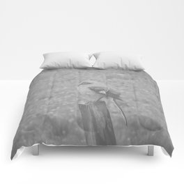 The Bird Light Black and White Comforters