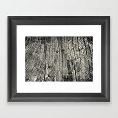 Aging Maple Log 2012 Framed Art Print