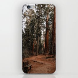 A Very Nice Place to Sit iPhone Skin