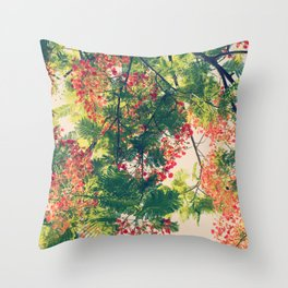 Royal Poinciana Colors Photograph Throw Pillow