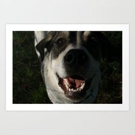 Happy Farm Dog Art Print