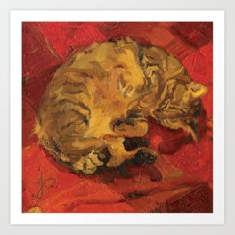 Tabby Cat Sleeping Animal Oil Painting in Vibrant Red Brown Yellow Impressionist Bright Colour Art Print
