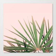 Palms blossom Canvas Print