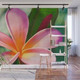 Pua Melia ke Aloha Pink Tropical Plumeria Maui Hawaii Wall Mural