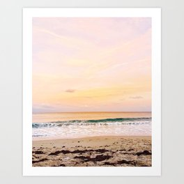 Palm Beach sunset Art Print