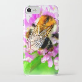 Common carder bee (Bombus pascuorum) on red clover iPhone Case
