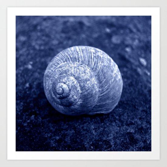 blue snail shell Art Print