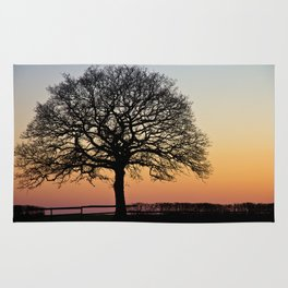 Lonely Tree Sunset Silhouette Rug