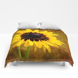 Gloriosa Daisy Comforters