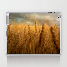 Harvest Time - Golden Wheat in Colorado Field Laptop & iPad Skin