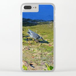 Yellow-crowned Night Heron Snack Clear iPhone Case