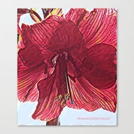 Red Flower in Vermont Winter Canvas Print