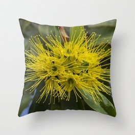 Golden Penda Flowers Throw Pillow