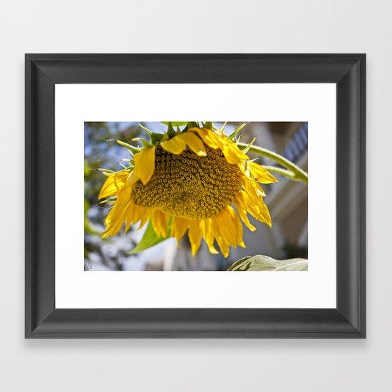 Take Cover [SUNFLOWER] Framed Art Print