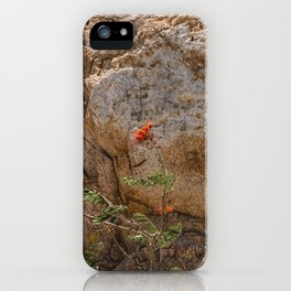 Mexico Mountain Flower iPhone Case