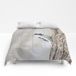 Wintertime Downy Woodpecker Comforters