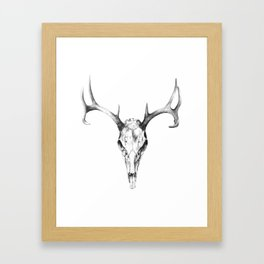 Deer Skull in Pencil Framed Art Print