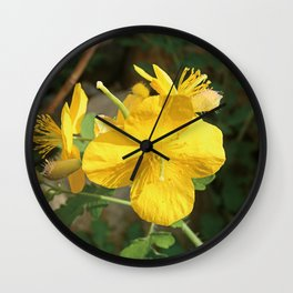 Celandine Flower Closeup Wall Clock