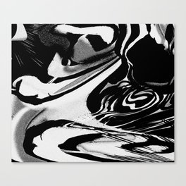 P03 Canvas Print