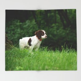 My Theodore ~The English Springer Spaniel~ 2 Throw Blanket