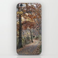 Into the fall woods. Yesterday iPhone & iPod Skin