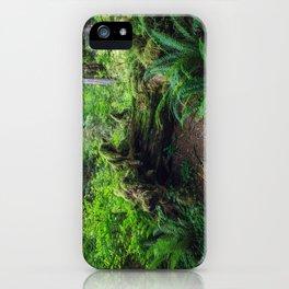 Hoh Rain Forest iPhone Case