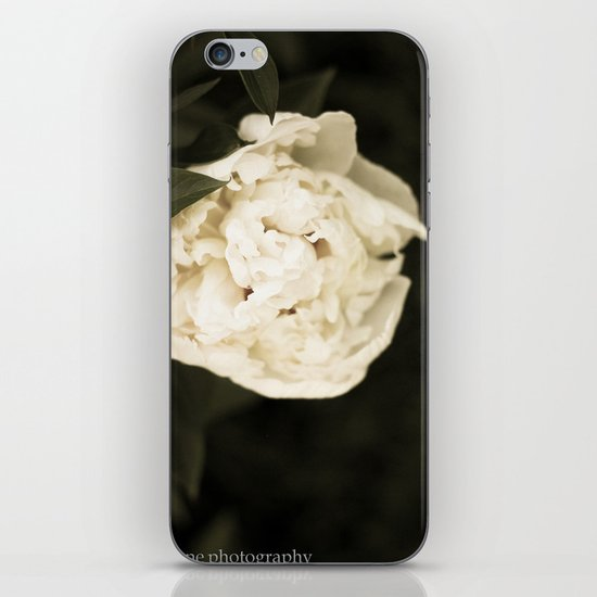 This Year's Love iPhone & iPod Skin