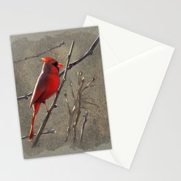 Cardinal Watching Stationery Cards