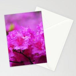 Azaleas in Keukenhof Botanical Garden. Netherlands Stationery Cards