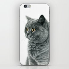 The Chartreux portrait G112 iPhone & iPod Skin