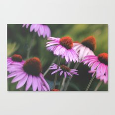 Dash of Spring Canvas Print