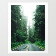 Driving through Washington Art Print