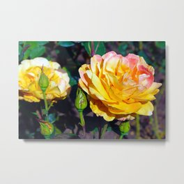 Dusted Roses Metal Print