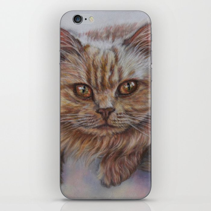 Cattitude - Long Haired Cat Staring at You iPhone Skin