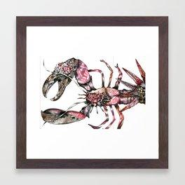 Aphrodisy  lobster Framed Art Print