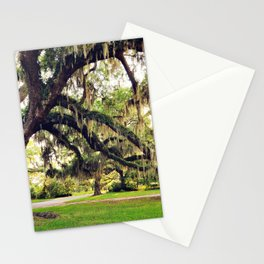 Live Oak Tree with Spanish Moss Stationery Cards