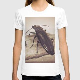 Viewpoints T-shirt