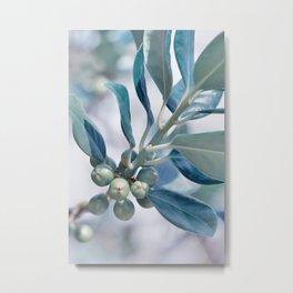 Blue berries 0183 Metal Print