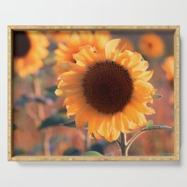 Soon she donates seeds for the birds the sunflower Serving Tray
