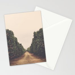 Vanish Stationery Cards